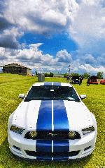 50th Mustang Get Together